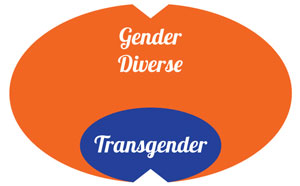 Gender diverse and transgender